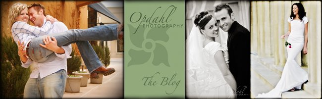 Opdahl Photography: The Blog