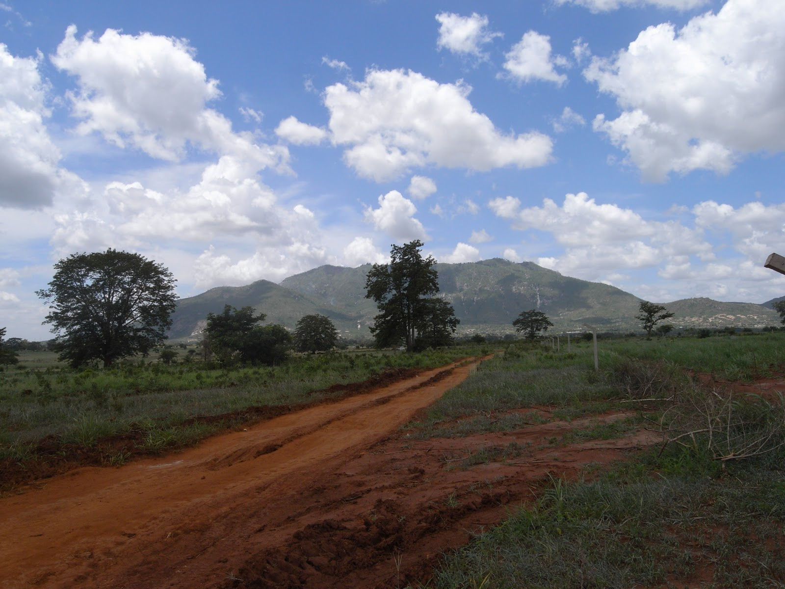 tanzania reisebrev safari
