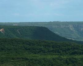 Serra do Araripe - Crato - Ceará - Brasil