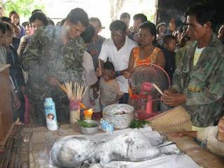 6 Makhluk Aneh Di Temukan di Pedalaman Hutan Thailand
