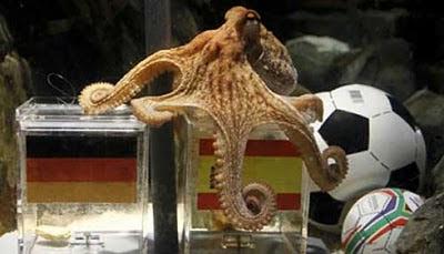 paul gurita mati