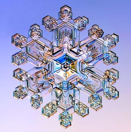 Gallery-Snowflakes-A-Stel-001.jpg
