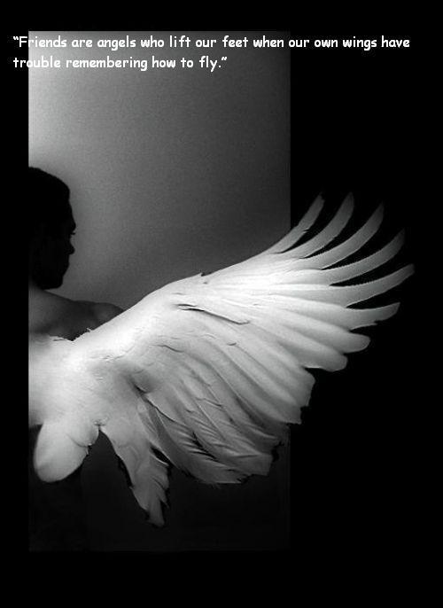 [angel]