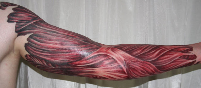 muscle tattoo. muscle tattoo. Tattoos; Tattoos. Bpositive. 03-17 04:53 PM