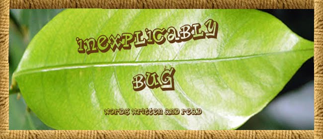 Inexplicably Bug