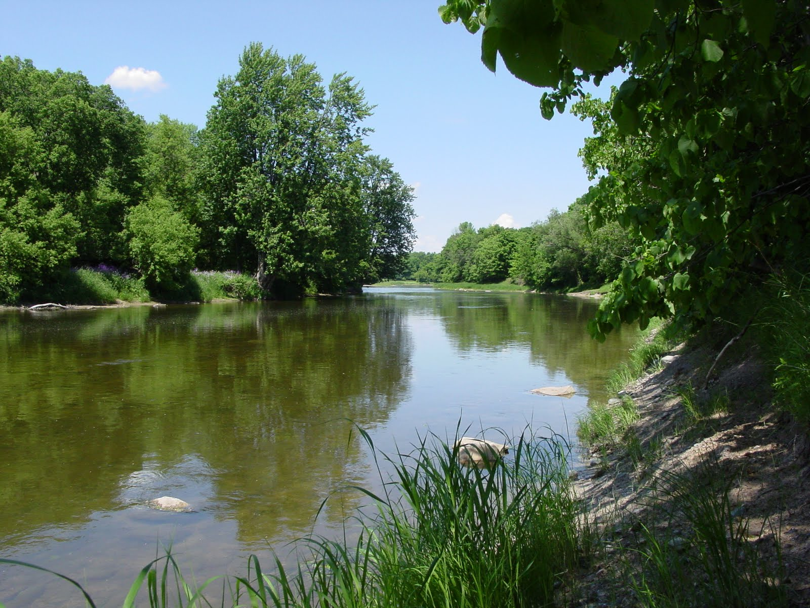 Chippewa Nature Center Summer Camps