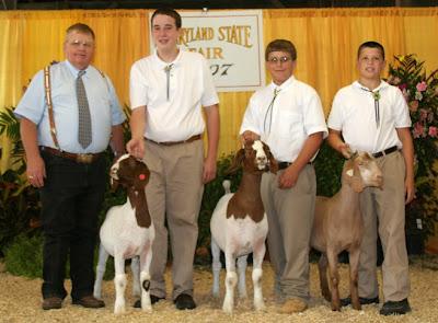 Champion 4-H/FFA Meat Goat Showman: Drew Cashman (L), Sam Harden (C), and Ryan Hevner (R)