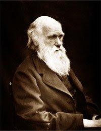 Darwin Year