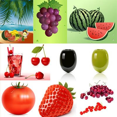 Fruit Berries & Vegetables Vector