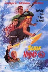 Baixe imagem de Surfistas Ninjas (Dublado) sem Torrent
