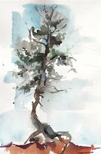 Precipice Tree