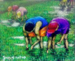 [artwork.planting+rice]