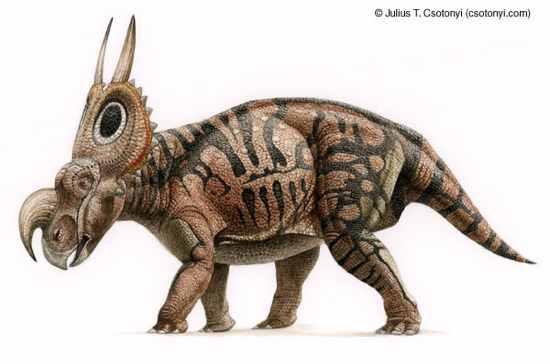 ig59 einiosaurus 02 10 Dinosaurus Bertanduk Paling Menakjubkan