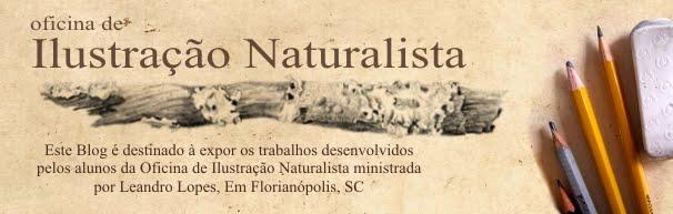 Oficina Ilustração Naturalista