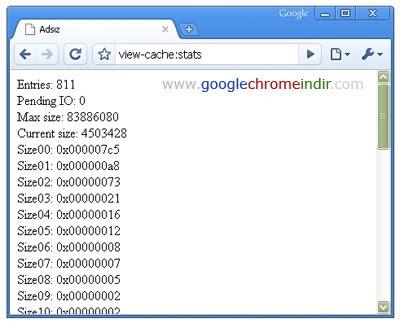 Google Chrome Ara Bellek Bilgileri