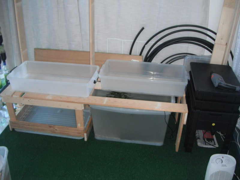 Aquaponics with fish tank fish for aquaponics for Kmart fish tank