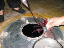 Sirviendo vino en fermentación maloláctica, para luego catar