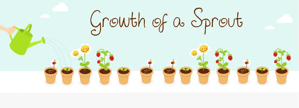 Growth of a Sprout