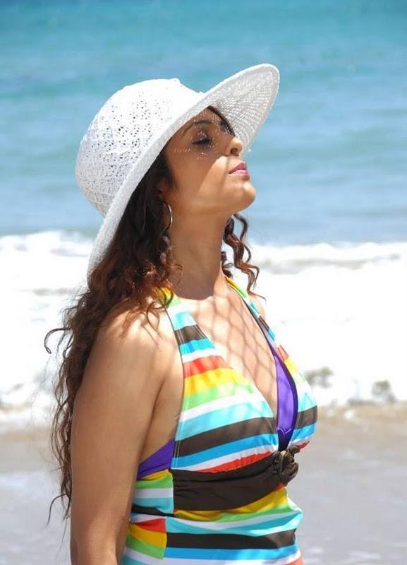 Anjana Sukhani Latest Hot Pictures unseen pics