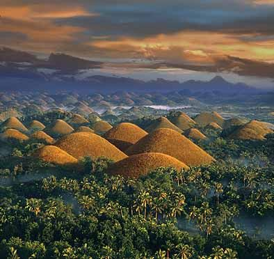Tarsier and Chocolate Hills In Bohol of the Philippines