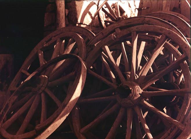 At Arabası Tekerleri