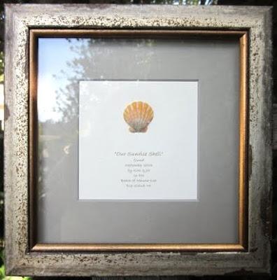 Framed Sunrise Shell