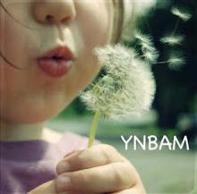 YNBAM community