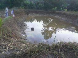 kolam ikan al Husna