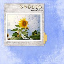 Sun[flower]shine
