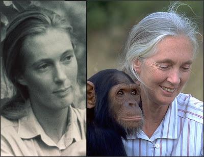 Cryptomundo » Jane Goodall Still Finds Bigfoot Fascinating