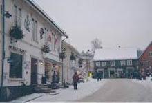 Drøbak är en tidigare köpstad, idag tätort på östra sidan av Drøbaksundet i Oslofjorden.