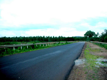 The road to Joes Home Stay