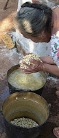 A color photo of a woman washing nixtamal, dried corn kernels that have been cooked and steeped in an alkaline bath.