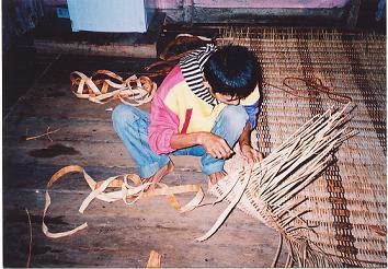 Penyebaran Dayak Salako di Pulau Kalimantan