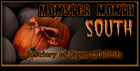 Monster Month South
