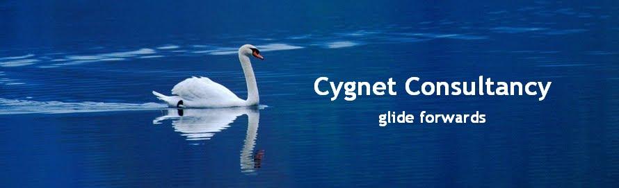 Cygnet Consultancy