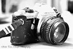 Sheila's Lens