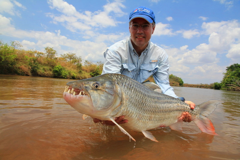how to catch tiger fish in komatipoort