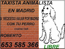 TAXISTA ANIMALISTA EN MADRID