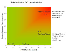 Pollution Death Risk