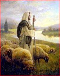 Domingo  25 Día de las vocaciones religiosas.Evangelio: El Buen Pastor.