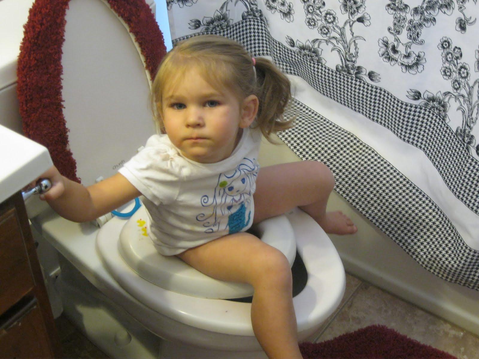 Toilet training cat wont poop in toilet