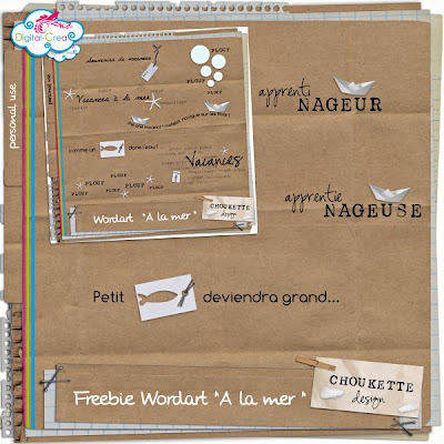 http://ledigidechoukette.blogspot.com