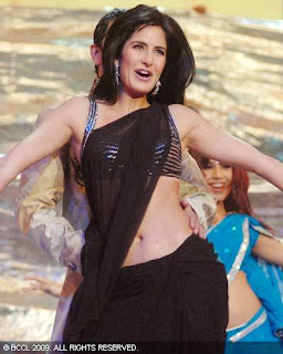 Katrina Kaif In Saree  Pictures