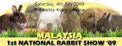 Beh and Yo's rabbit show banner 09