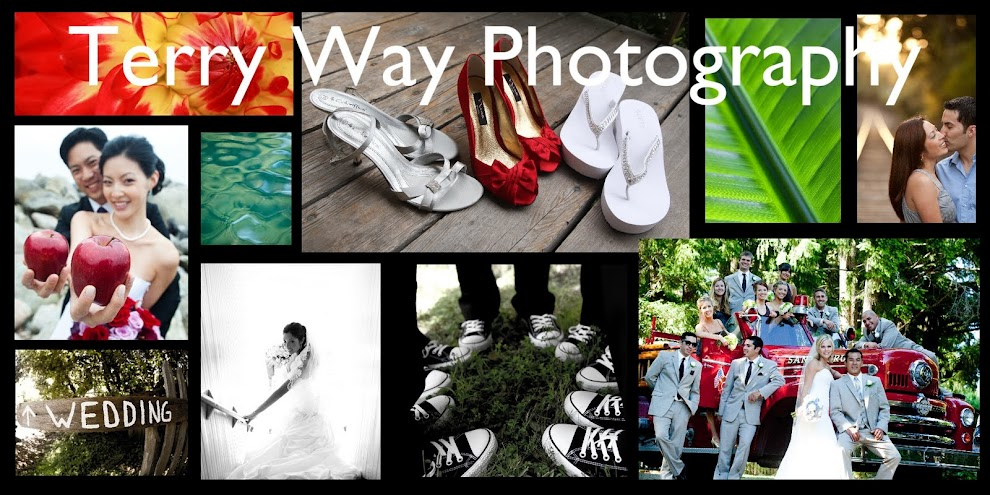 Radonich Ranch Wedding Photographer Terry Way