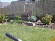 Z naší zahrady