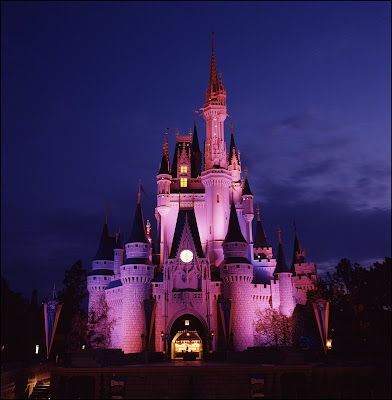 walt disney world castle. house Walt Disney World#39;s