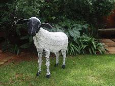 The Paschal lamb?