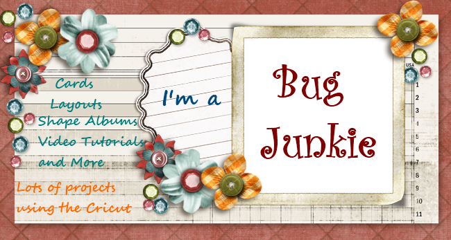 Bug Junkie